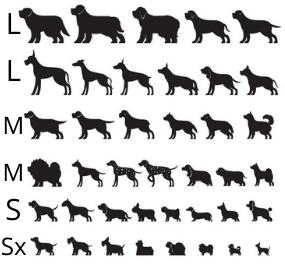 kutya nyakörv méret táblázat