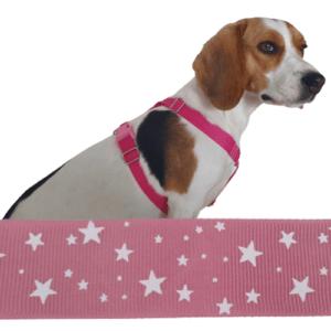 pink csillagos kutyahám