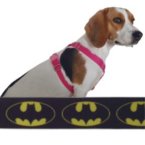 batman kutyahám