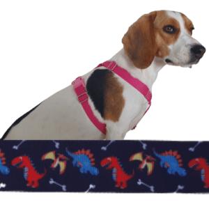 dinó kutyahám