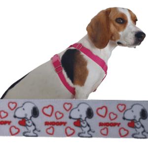 snoopy love kutyahám