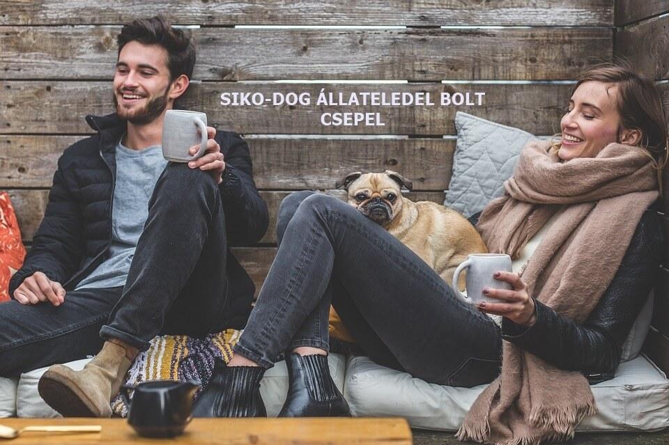 siko-dog