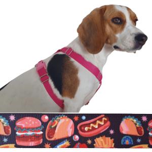 hamburger kutyahám