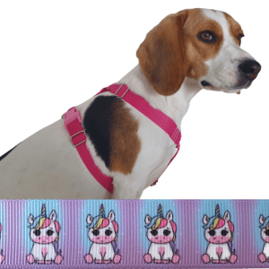 unikornis kutyahám