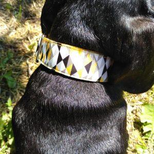 geometria ombre kutya nyakörv4